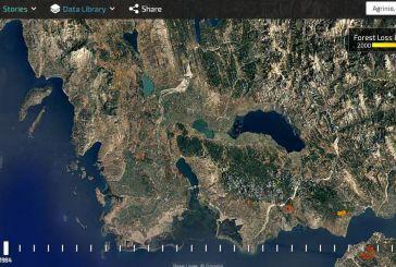 Ο χάρτης των χαμένων δασών της Αιτωλοακαρνανίας
