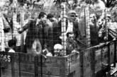 Εκδήλωση μνήμης και τιμής για τους αγωνιστές στο «σαμποτάζ» του Αιτωλικού