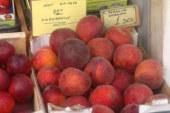 Μανάβης στο Μεσολόγγι για τα ροδάκινα: «Μην ζουλάτε, δεν κορνάρουν»