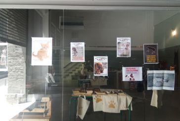 Ικανοποιητική συμμετοχή στο bazaar της Φιλοζωικής για τα αδέσποτα του Αγρινίου