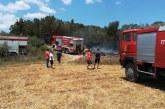 Κι άλλη φωτιά στην Παλαιομάνινα
