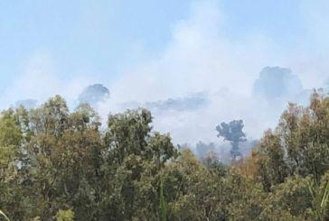 Πυρκαγιά στο λόφο του Τρίκαρδου στην Κατοχή