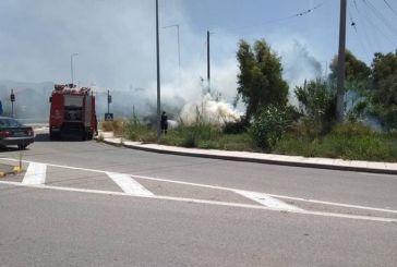 Αγριλιά Μεσολογγίου: Πυρκαγιά από βραχυκύκλωμα σε κολώνα της ΔΕΗ