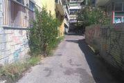Αγρίνιο, οδός Καποδιστρίου: Το δρομάκι με την… βλάστηση που θέλει κόψιμο