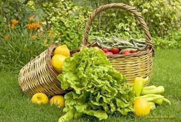 2 εκατ. ευρώ σε 852 δικαιούχους βιολογικής γεωργίας στην Αιτωλοακαρνανία