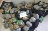 Μπλόκο στο Κομπότι στη μεταφορά 102 κιλών χασίς – Συνελήφθη 52χρονη (φωτο)