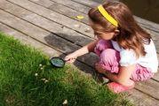Αντιμετώπιση δηγμάτων από φίδια σε παιδιά