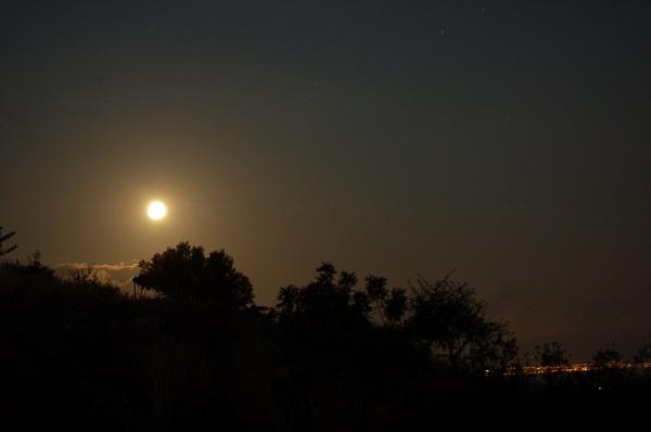 Μουσική υπό το φως της πανσελήνου στην Πλευρώνα