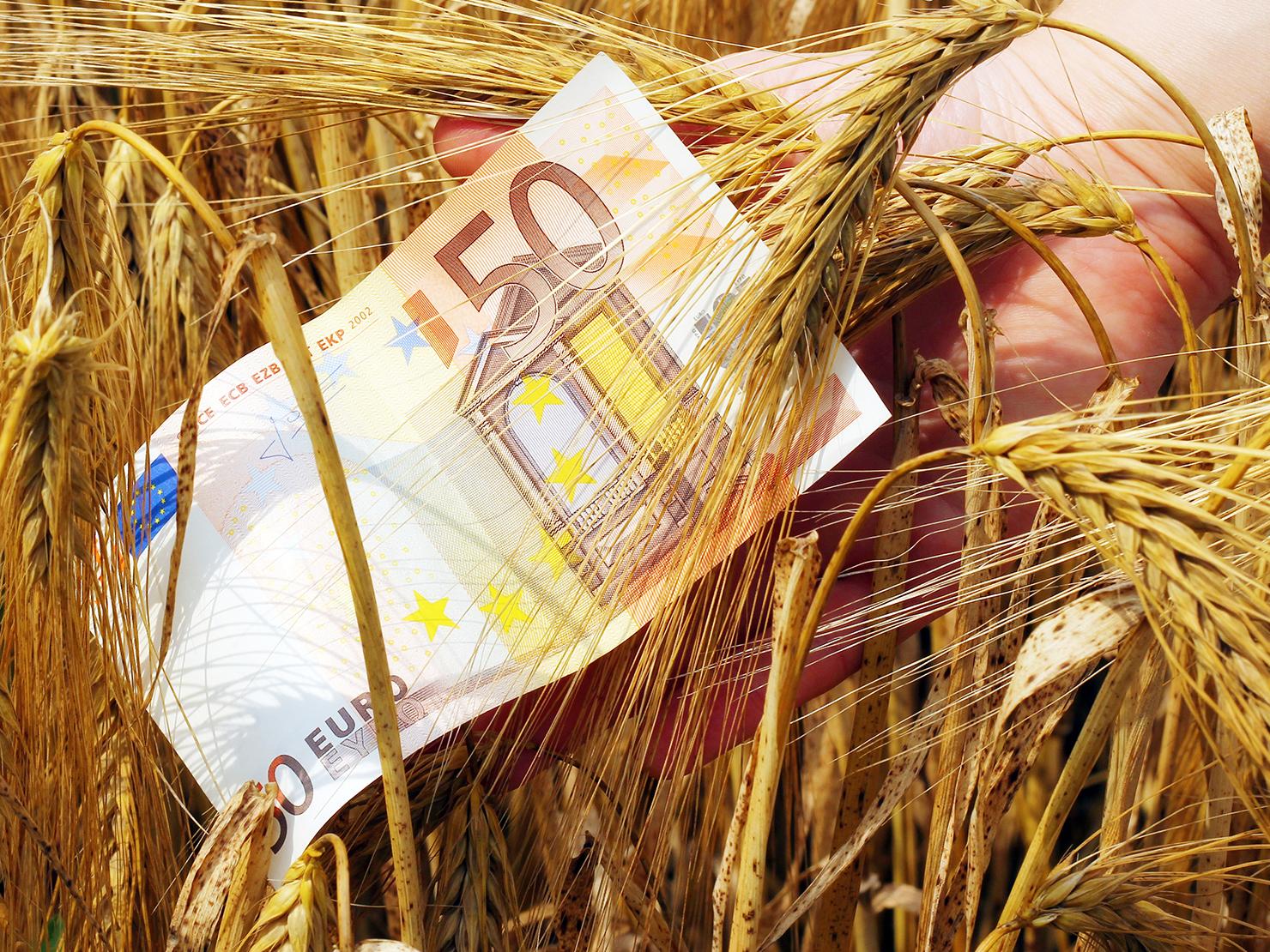 ΟΠΕΚΕΠΕ: Πληρωμές 3,72 εκατ. ευρώ σε δικαιούχους