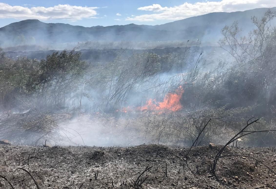 Φωτιά από καλώδιο της ΔΕΗ στα Αμπέλια Παρακαμπυλιών- χωρίς ρεύμα χωριά της περιοχής