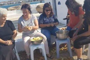 Ολη η Νάξος… καθαρίζει πατάτες – Πάει για ρεκόρ Γκίνες (φωτο)