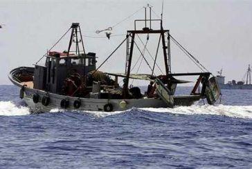 Πρόσθετα διαχειριστικά Μέτρα για την αλιεία της Βιντζότρατας
