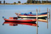Πολύχρωμες γάιτες στη Λιμνοθάλασσα του Μεσολογγίου