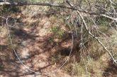 Σύλληψη στο Ανοιξιάτικο για παράνομο κυνήγι αγριογούρουνων