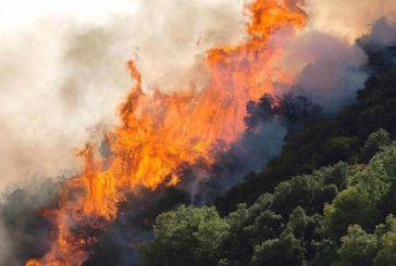 Μεγάλη κινητοποίηση της Πυροσβεστικής για φωτιά κοντά στη Σταμνά