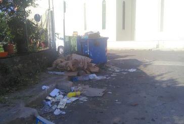 Αγρίνιο: Άδειασμα των κάδων για «ψαχτήρι» και η εικόνα κάπως έτσι…