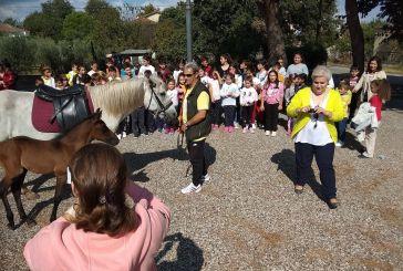 Ημέρα Σχολικού Αθλητισμού στο Δημοτικό Σχολείο Καλυβίων (φωτο)