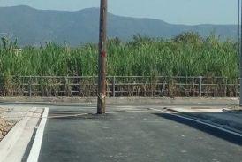 Μεσολόγγι: Κολώνα «φύτρωσε» στη μέση δρόμου
