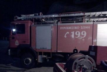 Αγρίνιο: Συναγερμός στην Πυροσβεστική για φωτιά σε αποθήκη με μελίσσια κοντά στο ρέμα Ρεμπελιά