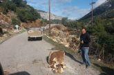 Προσοχή λόγω… βράχων στο δρόμο για τα Βλυζιανά