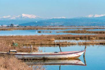 Η παράνομη αλιεία στον Αμβρακικό πλήττει ψαράδες και οικοσύστημα