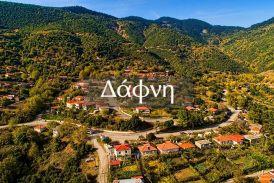 Ευρυτανία: Τo πανέμορφο χωριό Δάφνη (βίντεο)