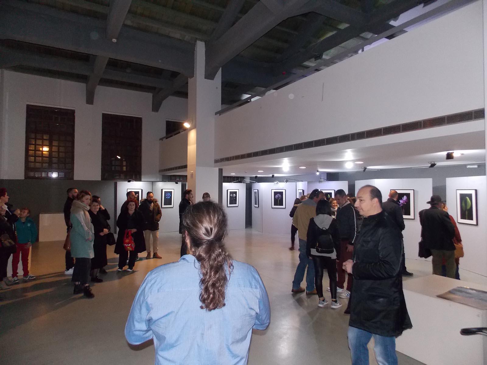 """""""Πορτρέτα φυτών"""" και η τέχνη του τροχού σε έκθεση στο Αγρίνιο"""