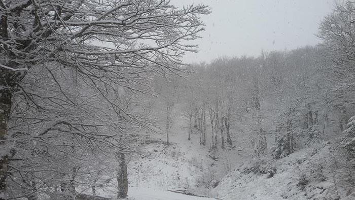 Νέο δελτίο επιδείνωσης του καιρού- ένταση χιονοπτώσεων στη Στερεά Ελλάδα