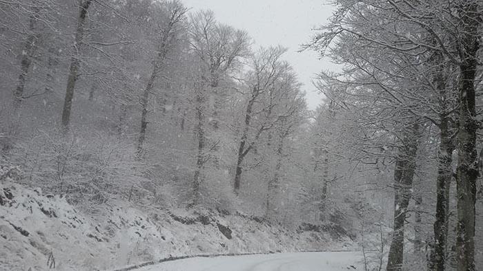 Κακοκαιρία «Ζηνοβία»: Ψυχρή εισβολή και χιόνια έως την Πρωτοχρονιά