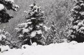 Χειμωνιάτικο σκηνικό στη Ναυπακτία – Βροχές και χιόνια στα ορεινά (φωτο & βίντεο)