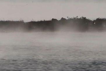 Ναύπλιο: Γιατί «βράζει» η θάλασσα (Video)
