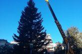 Έφθασε το χριστουγεννιάτικο δένδρο στην κεντρική πλατεία του Αγρινίου (φωτό)
