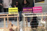 Διαμαρτυρία της ΠΟΕΔΗΝ με… κότες και κοκόρια έξω από το υπ. Υγείας