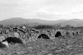 Τα ξεχασμένα γεφύρια του Αλάμπεη στο Αγρίνιο (φωτο)