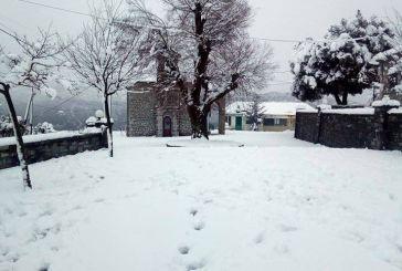 Εντυπωσιακό το λευκό σκηνικό σε Βρουβιανά και Αυλάκι Ορεινού Βάλτου (φωτό)