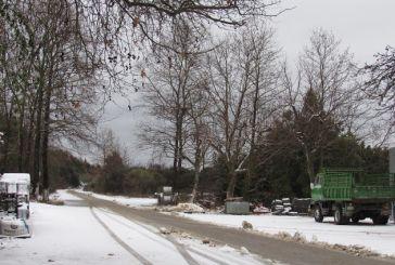 Μαγευτικό χιονισμένο τοπίο στην Φλωριάδα ορεινού Βάλτου (φωτο & βίντεο)