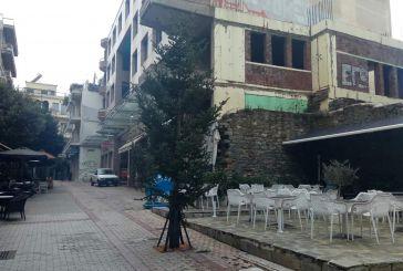 Κάποια χριστουγεννιάτικα δέντρα στο Αγρίνιο πήραν παράταση!
