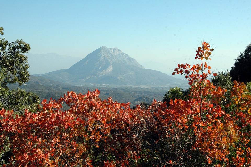 Ηλιοφάνεια με κανονικές θερμοκρασίες το τριήμερο στην Αιτωλοακαρνανία