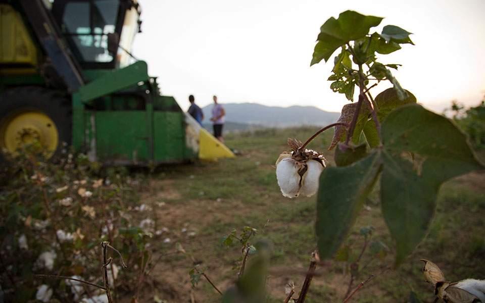 ΔΕΗ: Εως τις 30 Ιουνίου η προθεσμία υποβολής δικαιολογητικών για το Αγροτικό Τιμολόγιο