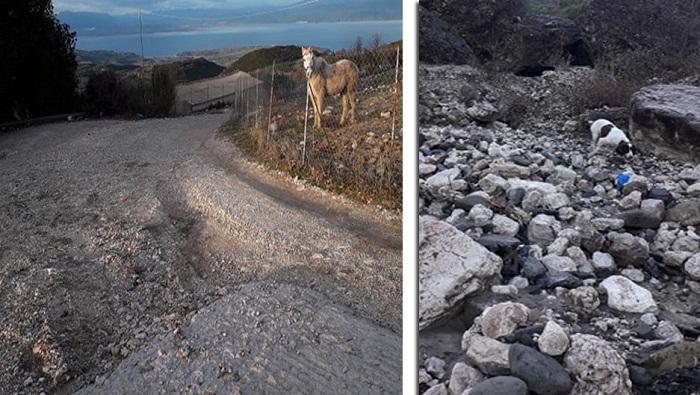 Σε απόγνωση αγρότες και κτηνοτρόφοι στο Θύρρειο Βόνιτσας από τις βροχοπτώσεις