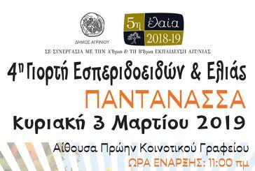 Την Κυριακή η 4η Γιορτή Εσπεριδοειδών στην Παντάνασσα