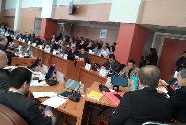 «Όχι» από το Περιφερειακό για τη μονάδα βιομάζας στο Λεσίνι
