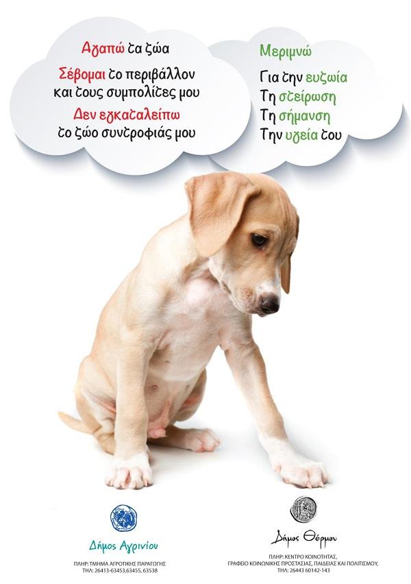 O δήμος Αγρινίου υπενθυμίζει στους ιδιοκτήτες ζώων συντροφιάς τις υποχρεώσεις τους