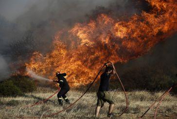 Υπό έλεγχο η φωτιά κοντά στη Σταμνά