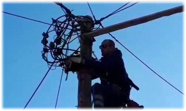 Eπιχείρηση απεγκλωβισμού γάτας από κορυφή κολόνας στο κέντρο της Αμφιλοχίας (βίντεο)