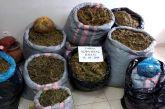 Εξαρθρώθηκε μεγάλο κύκλωμα διακίνησης ναρκωτικών με δράση και στην Αιτωλοακαρνανία