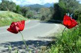 O καιρός την Μεγάλη Εβδομάδα στην Αιτωλοακαρνανία