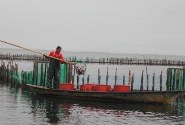 Ενδιαφέρουσα εκδήλωση στον Αστακό για την παράκτια αλιεία