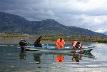 Συνεργασία Φορέα Διαχείρισης Λιμνοθάλασσας και ΕΛΚΕΘΕ για δειγματοληψίες υδάτων