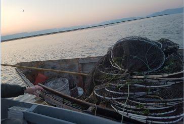 Έριξαν παράνομα δίχτυα για ψάρεμα στον Αμβρακικό Κόλπο